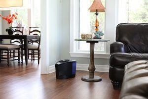 Vornado Evap3 Black Evaporative Humidifier Lifestyle