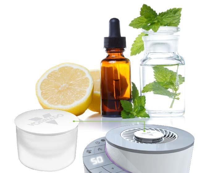 Element Aromatherapy 1